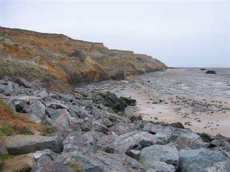 Walton On The Naze Essex Discovering Fossils On The