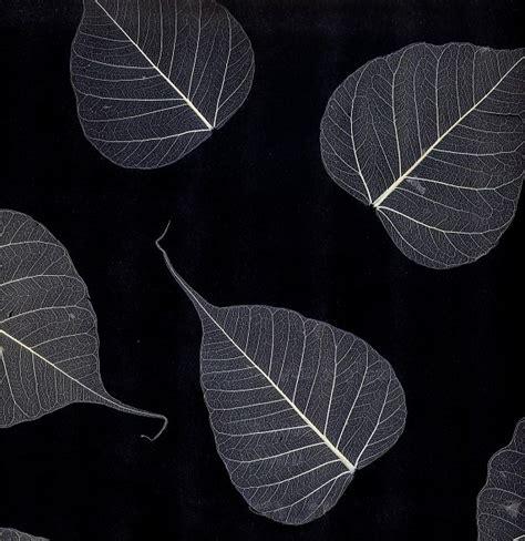 wallpaper black leaf black and white natural leaf wall covering