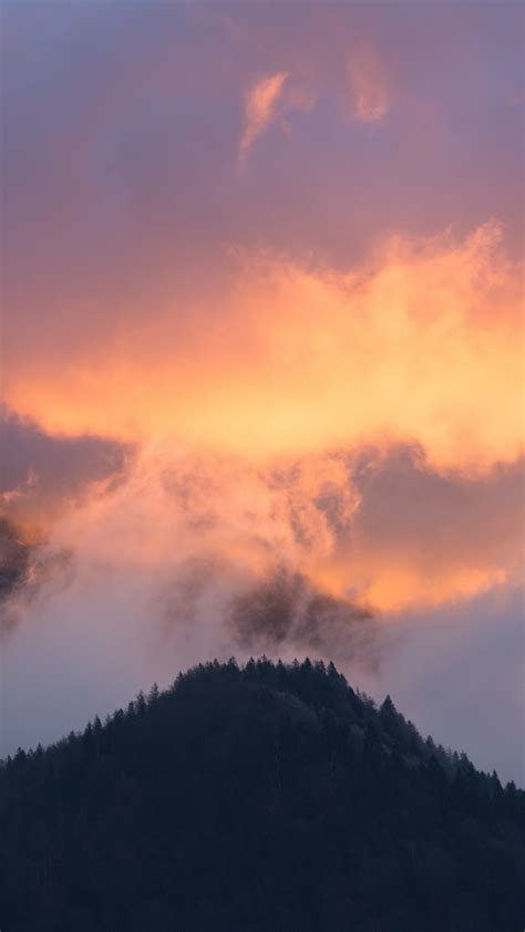 mountains fog sky trees sunset wallpaper