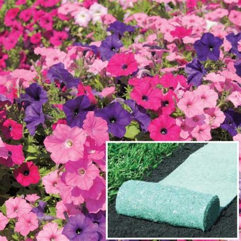 Flower Roll Out Mat by Pin By Walter On Lawn Garden