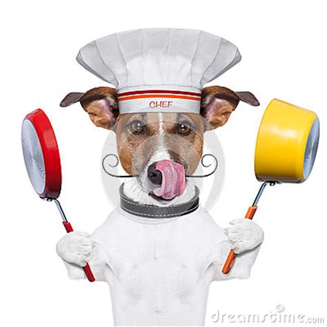 how to cook dogs in a pan cook chef stock photo image 29939480
