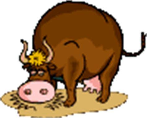 imagenes gif vacas gif vaca comiendo alfalfa gifs e im 225 genes animadas