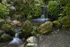 panoramio photo of berkeley botanical garden waterfall