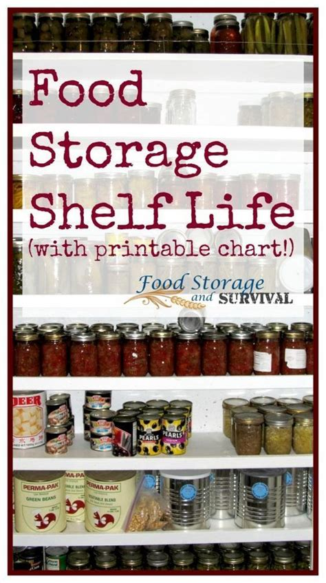 Emergency Food Shelf by 17 Best Ideas About Food Storage Shelves On