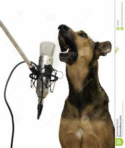 singing dog royalty free stock photos image 1480028