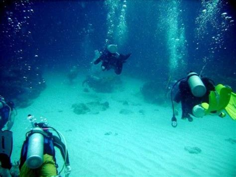 best dive spots in the caribbean best diving spots in curacao caribbean things to do