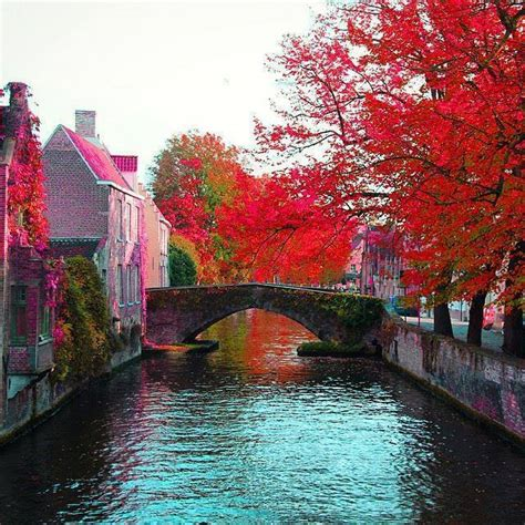colorful brugge belgium spring visit xcitefunnet