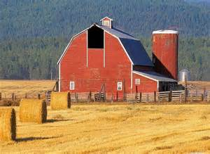Pets Barn Montana Old Barn And Hay Fields In Cattle Country Flathead Valley