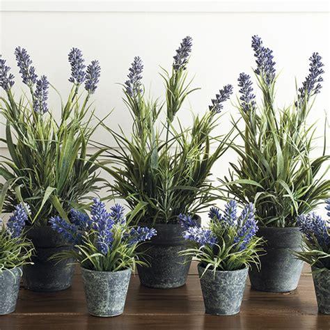 indoor plants uk botanical blooms the best artificial house plants