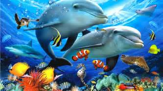 Colorful Fishes Wallpaper Galaxy Of Entertainment » Ideas Home Design