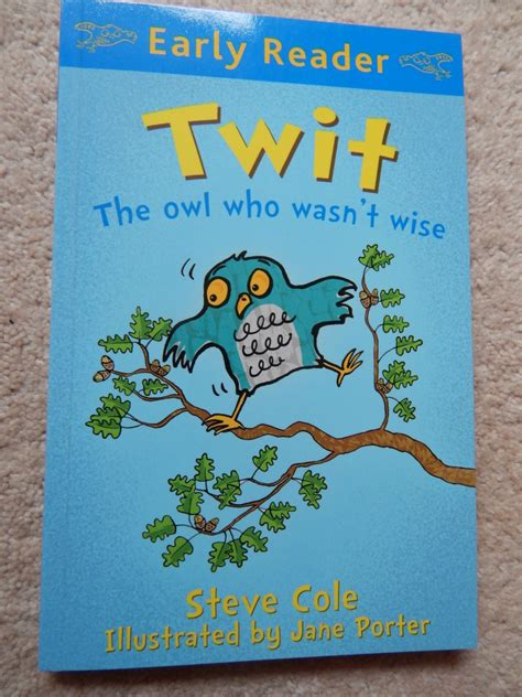 the who wasn t tired books twit the owl who wasn t wise a book review 40 and