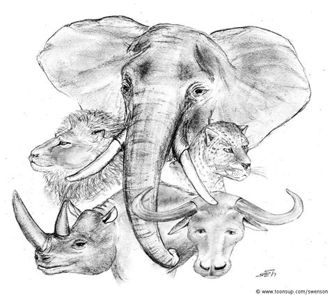Big 5 Sketches by Illustration The Big Five