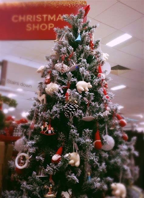 christmas trees at sainsburys news gt lewis or sainsbury s hereford sixth form college