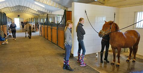 Garage Barn Designs the horse stables that grows with your requirements borga