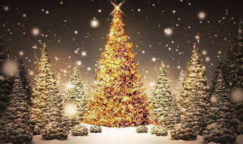 Les Plus Belles Décorations De Noel by Images Gratuites Sapin De Noel