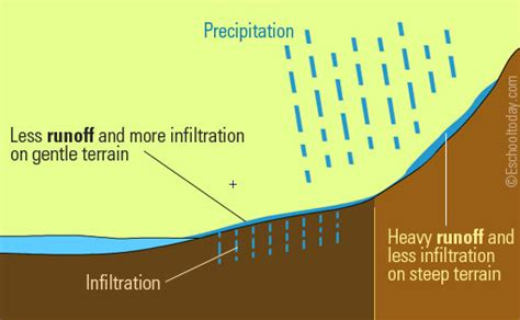 runoff diagram the water cycle thinglink