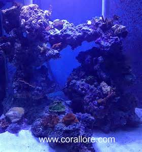 aquascaping columns in a saltwater tank corallore