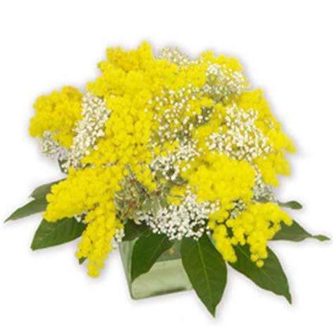 fiori mimose fiori a domicilio centrotavola con mimose