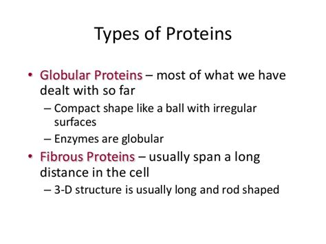 8 protein functions protein structure function
