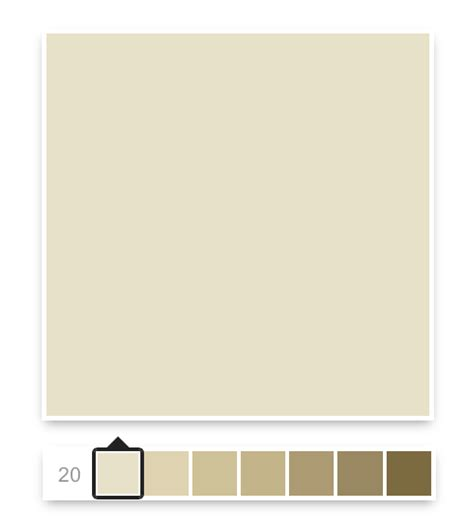 sopo cottage color palette for the duplex