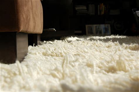 Vacuuming A Shag Rug by How To Vacuum Clean A Shag Rug At Home Mailoref