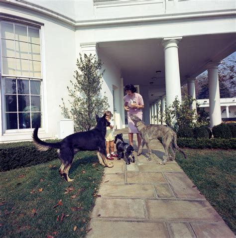 home to jfk st c363 2 63 john f kennedy jr with family dogs