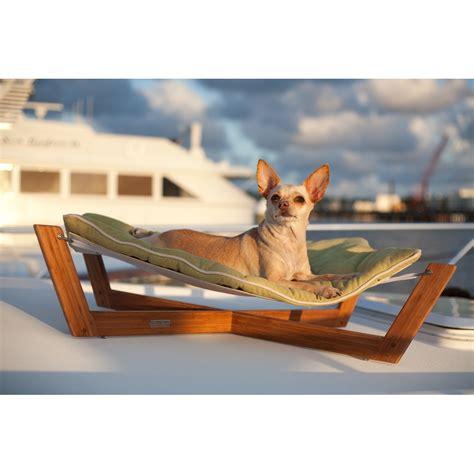 dog hammock bed dog beds hammock style how do you choose a dog bed vet
