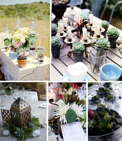 Succulent Wedding Decor Ideas   Primadonna Bride