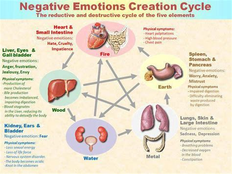 Can Emotional Healing Cause Physical Detox by Emotionalbody