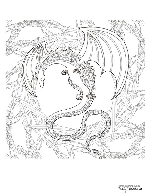 dragon coloring page for adults dragon adult coloring pages