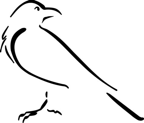 mohawk outline designs free vector graphic crow bird outline drawing free