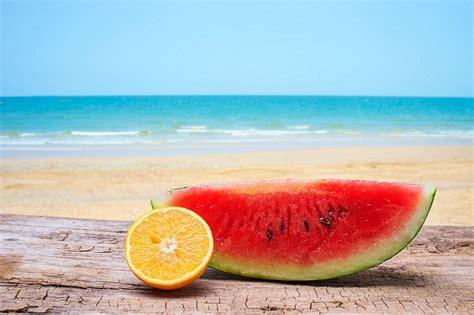 imagenes vacaciones verano vacaciones de verano diferencias entre veranear en el