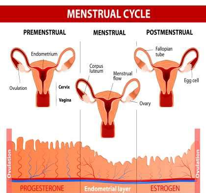 why do we get mood swings during periods pms crs what is normal