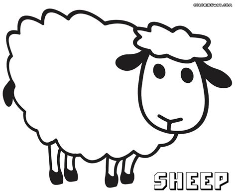 sheep coloring pages coloring pages    print