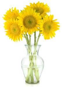 sonnenblumen in der vase sonnenblumen in vase deko sonnenblume ideensammlung