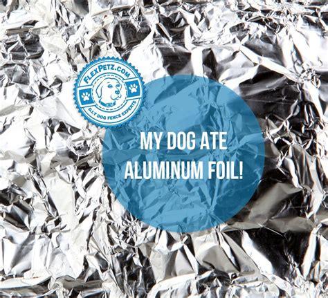 ate aluminum foil ate aluminum foil