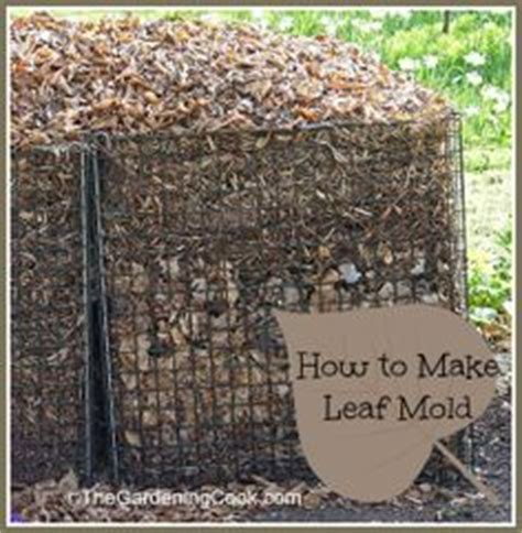 how to make leaf mold for organic gardening organic gardening tips organic gardening and