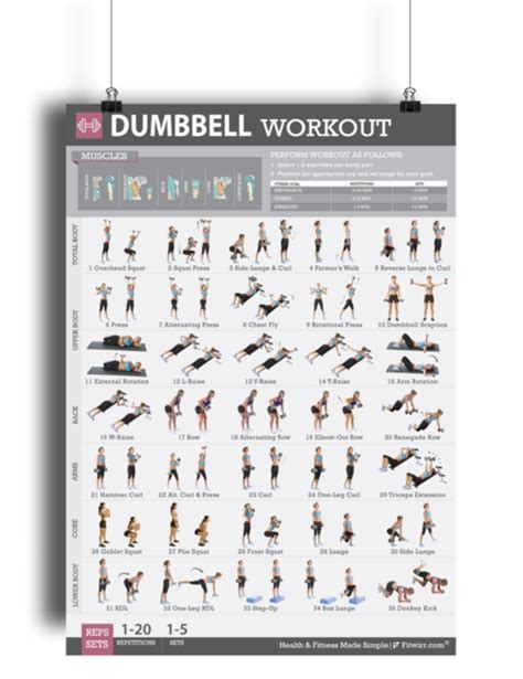 fitwirr dumbbell workout poster for 19 x 27