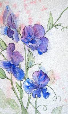 watercolor vine tattoos sweet pea vine watercolor sweet pea sketch 6 x 9 5
