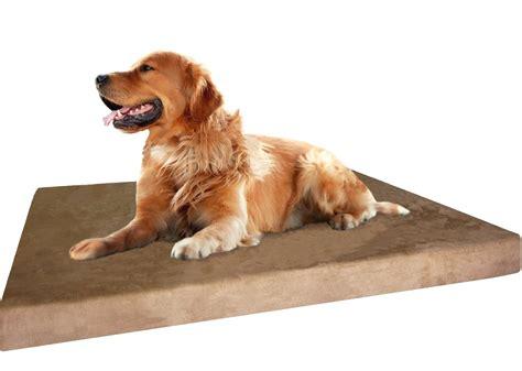 best orthopedic dog bed top 10 best orthopedic dog bed reviews 2018 models