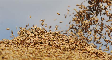 agricole russe l agriculture russe conna 238 t un regain d investissements