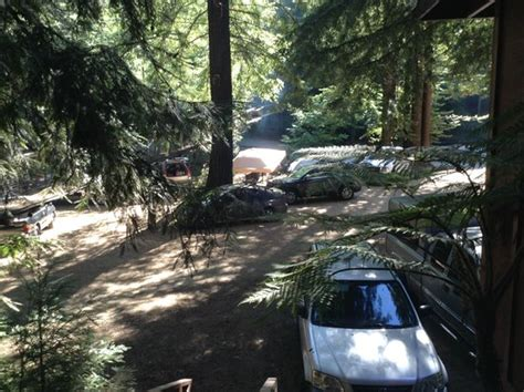 Big Sur Riverside Cground And Cabins by Cabin 3 Picture Of Riverside Cground And Cabins Big Sur Tripadvisor