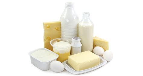 The Best Diet Milk And Cheese Department by Food Safety Best Practices For Milk And Dairy Products
