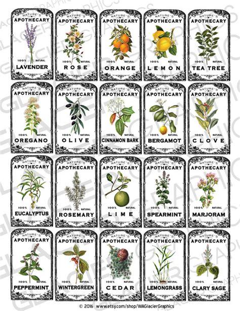 printable labels nz vintage herbal essential oil labels vintage herbal oil