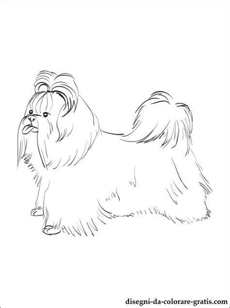 kung fu shih tzu disegni di shih tzu da colorare on line gratuito pagina con un