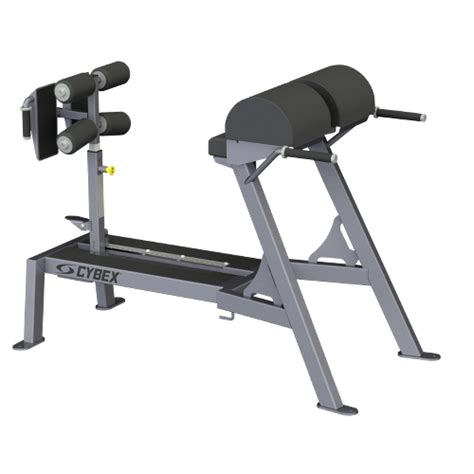 bench glute raises big iron glute ham bench cybex