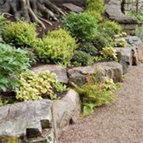 realizzazione giardini fai da te giardini fioriti crea giardino realizzare un giardino