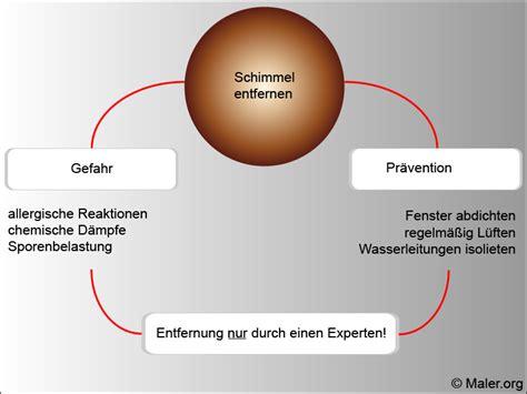 Schimmel In Dusche Entfernen 5279 by Schimmel Entfernen Schimmel Entfernen Einebinsenweisheit