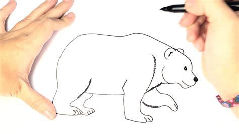 imágenes de osos fáciles para dibujar como dibujar un oso polar para ni 241 os paso a paso youtube