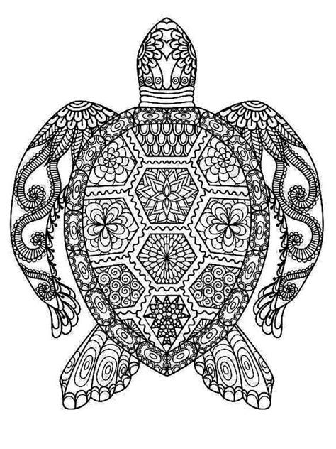 Turtle Mandala   Turtle coloring pages